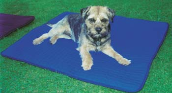 Thermatex  Quilted Dog Mat