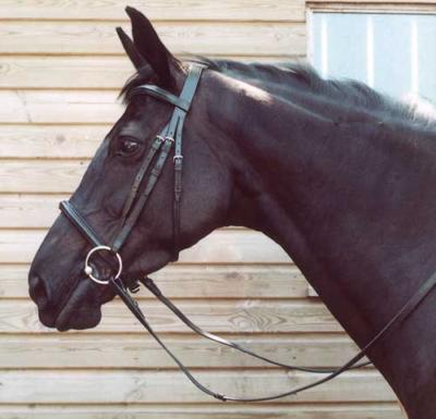 Heritage English Leather Bridle