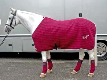 Thermatex Horse Rugs From Rideyourbest Com