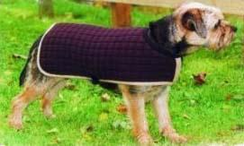 Thermatex Dog Coat